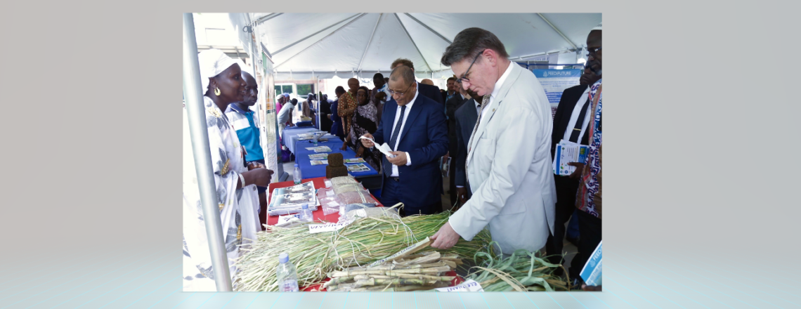 U.S. Renews Commitment to Mali's Food Security  and Agricultural-led Economic Growth