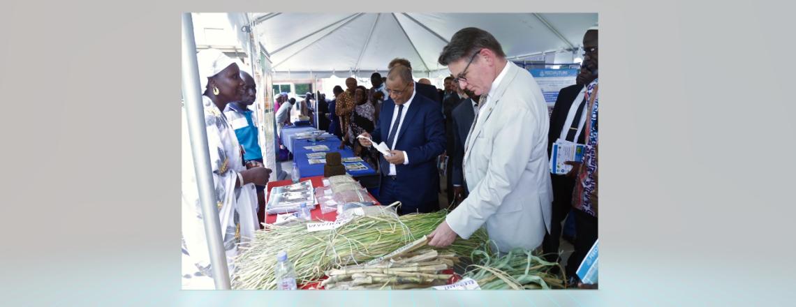 Les Etats-Unis Renouvellent leur Engagement pour la Sécurité Alimentaire au Mali