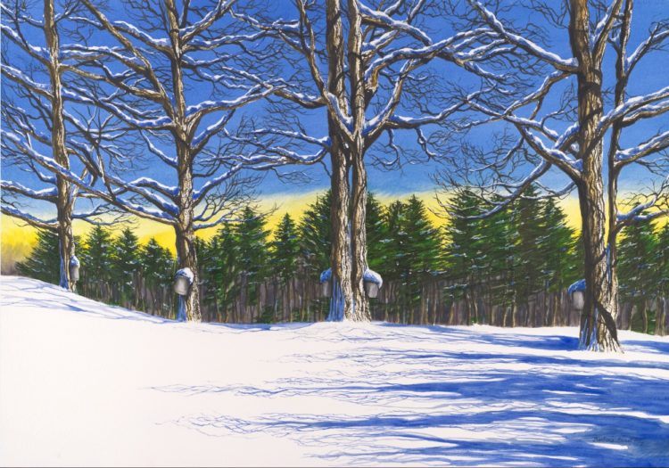 """Fresh Snow"" by Barbara Ernst Prey, 2011"