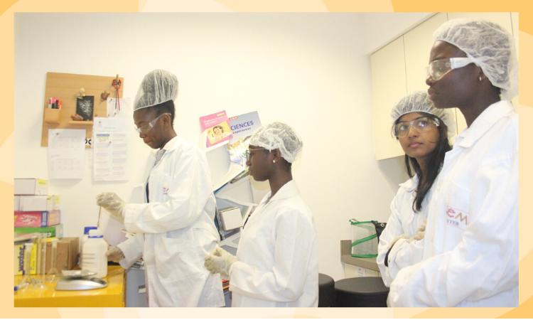 Une vue des participantes au programme de formation en STEM
