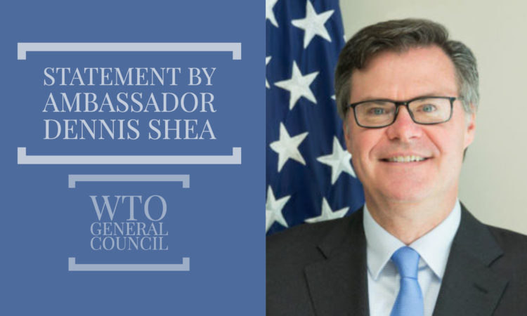 Ambassador Shea Statement at WTO Heads of Delegation meeting on fisheries subsidies