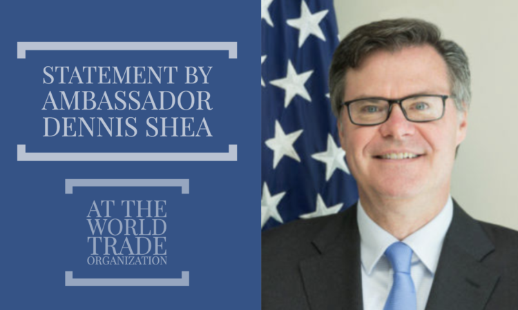 STATEMENTS AT WTO BY AMBASSADOR SHEA