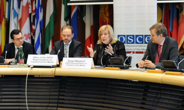 The OSCE Representative on Freedom of the Media, Dunja Mijatović, giving opening remarks at an expert meeting in December 2015. (OSCE)