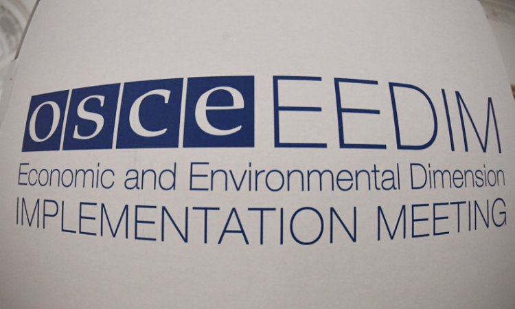 The 2017 OSCE Economic and Environmental Dimension Implementation Meeting. (USOSCE/Colin Peters)
