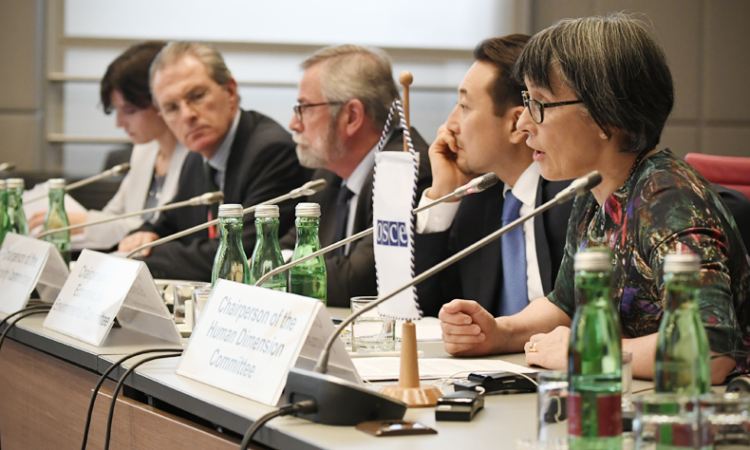 United Kingdom Ambassador Sian MacLeod addresses the OSCE Permanent Council in her capacity as Chairperson of the Human Dimension Committee, Vienna, Austria, October 19, 2017. (USOSCE/Colin Peters)