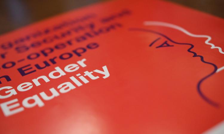 OSCE information leaflet on gender equality in the OSCE. (USOSCE/Colin Peters)