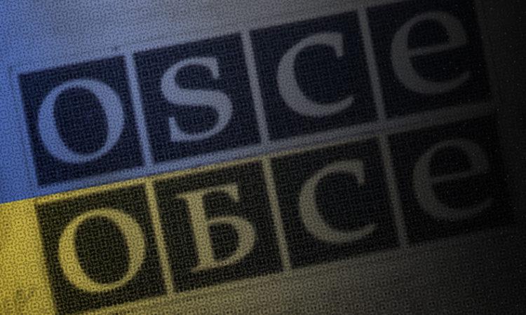 Специальная мониторинговая миссия (СММ) Организации по безопасности и сотрудничеству в Европе (ОБСЕ)