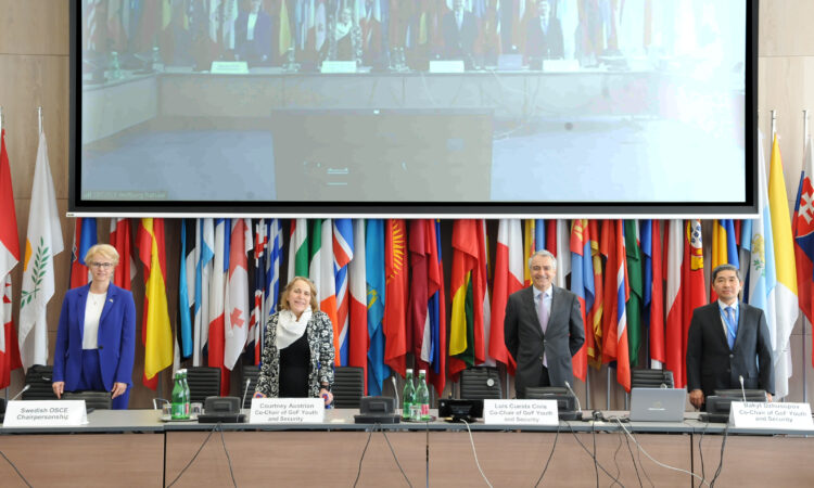 Group of Friends of Youth and Security as Group Co-Chair. (OSCE)