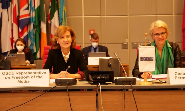 Teresa Ribeiro as the Representative on Freedom of the Media presents her first findings to the OSCE Permanent Council (OSCE)
