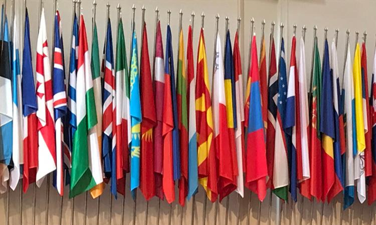 EEF 2019 flags DeGrande