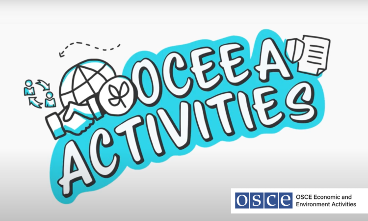 OSCE EEA