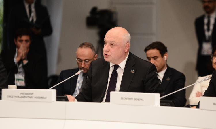 OSCE PA President Tsereteli