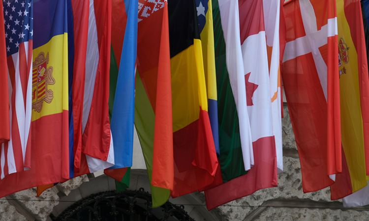 OSCE flags