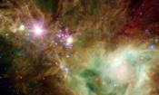 The Stellar Snowflake Cluster. Image Credit: NASA/JPL-Caltech/P.S. Teixeira (Center for Astrophysics)