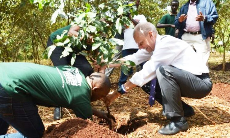 Ambassador Godec puts a sapling into the soil