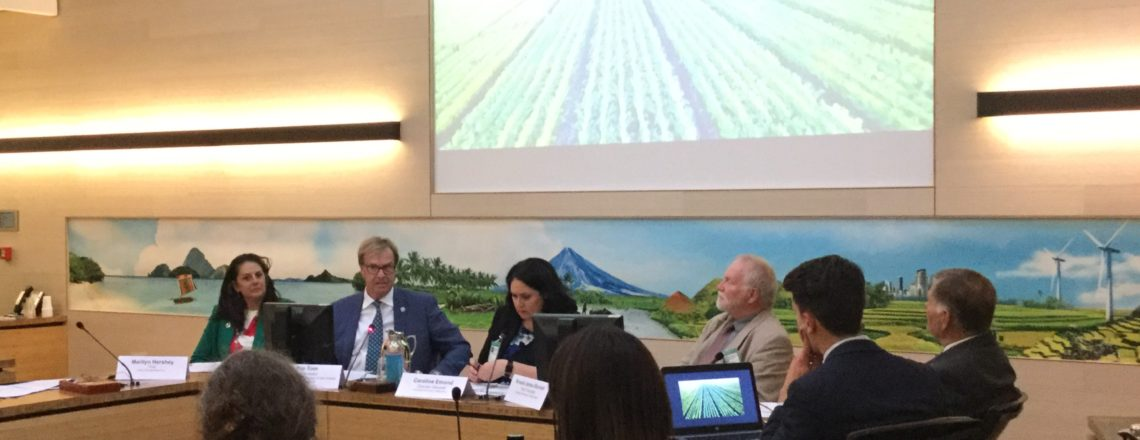 Ambassador Kip Tom speaks at the launch of the Decade of Family Farming at the FAO
