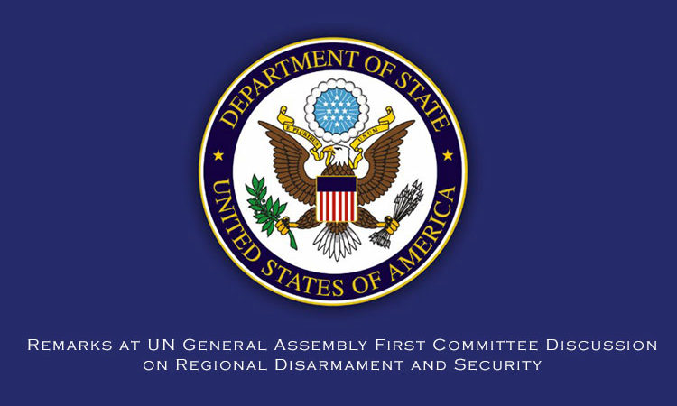 Remarks at UN General Assembly First Committee Discussion on Regional Disarmament and Security