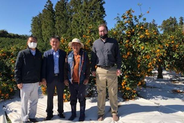 주한미국대사관 농무관실 한국 감귤류 생산량 조사