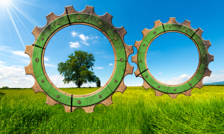 Advancing Sustainable Recovery