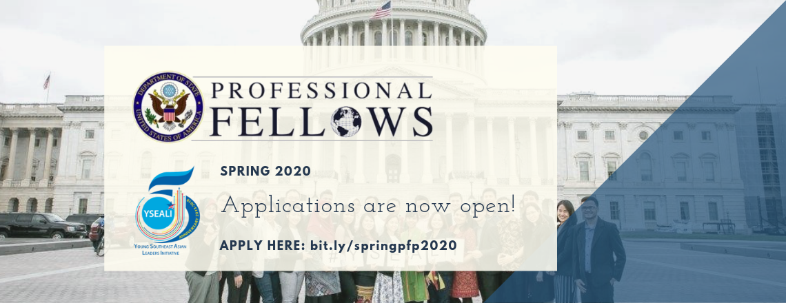 YSEALI Professional Fellows Application Are Now Open!