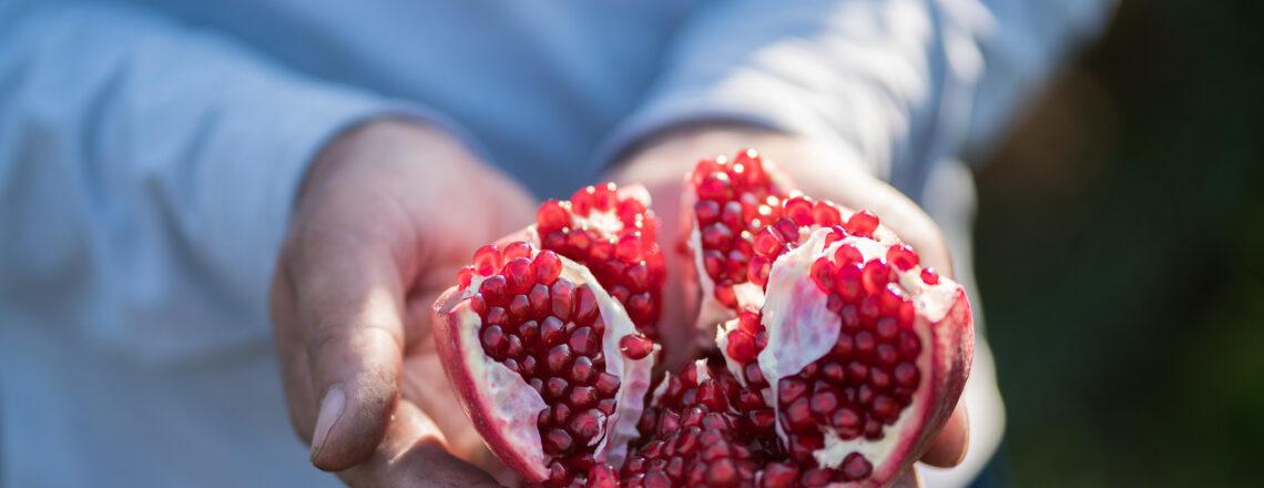 USAID запускает новый проект по усилению развития агробизнеса в Узбекистане
