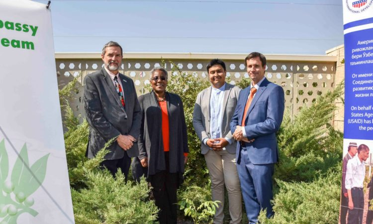 Walnut tree with California roots planted at U.S. Embassy in Tashkent