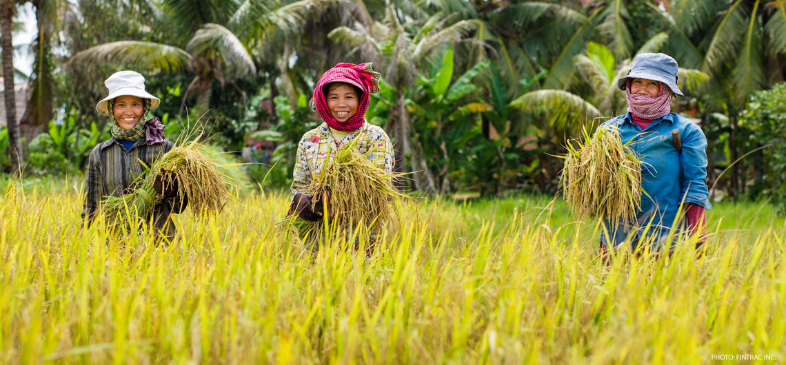 Event: Business Opportunities in Cambodia's Agriculture