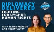 dipdel-uyghurs-web