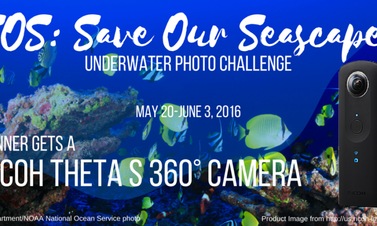 SOS- Save Our Seascapes graphic