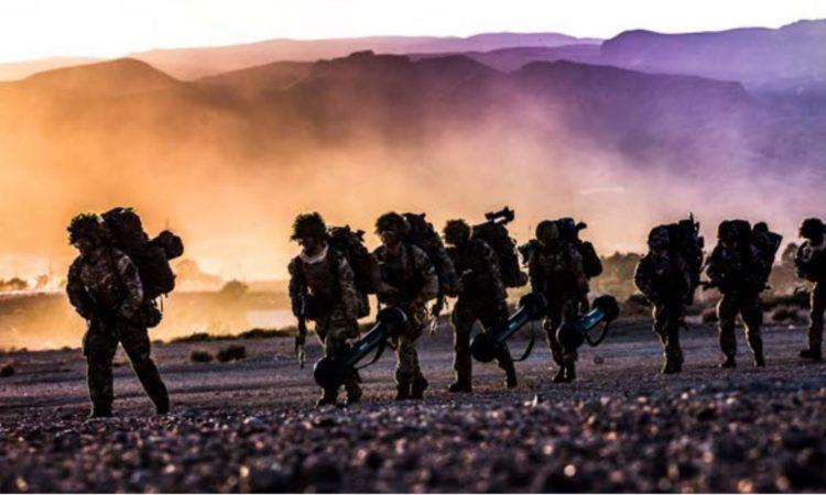 Allied forces training during NATO Exercise Trident Juncture 2015 / NATO'nun Trident Juncture 2015 Tatbikatı kapsamında eğitim yapan İttifak birlikleri